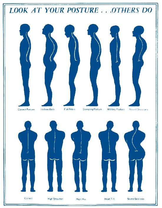女性坐姿剪影矢量图